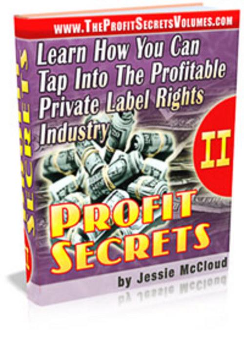 Product picture Profit Secrets Volume II.zip